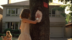 Cecilia and the infected elm